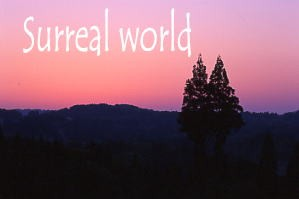 Surrealworld